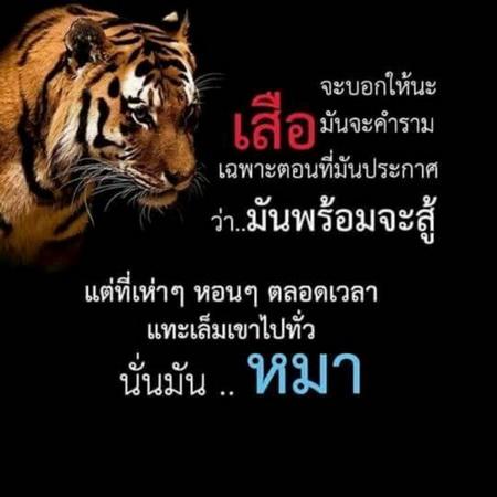 http://image.coolz-server.com/file/Ytx70jFz.jpg